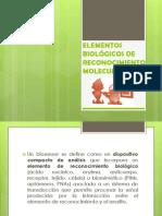 ELEMENTOS BIOLÓGICOS DE RECONOCIMIENTO CELULAR