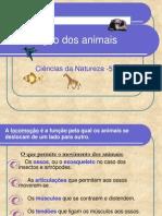 Locomoo Dos Animais