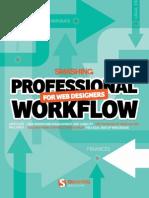 Professional Workflow