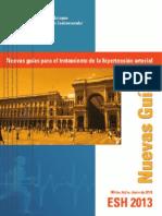 Resumen Guias Europeas HTA 2013