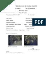 Reporte Identificacion de Minerales