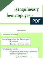 SI Hematopoyesis_2 (1)