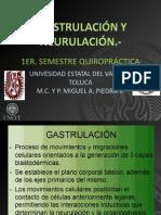 Gastrulacion y Neurulacion