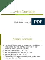 Pares Craneales 2012-1