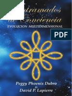 Entramados de Conciencia - Evolución multidimensional