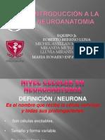 INTRODUCCION A LA NEUROANATOMIA.pptx