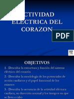 Enfoque Fisiologico Del Electrocardiograma Curso ASEMEA 2014 Jueves