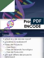 Proyecto Encode (1)