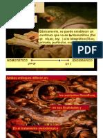 Enfoques de la investigación-MALDONADO