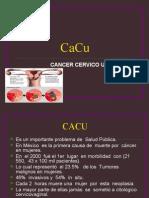 CACU mody