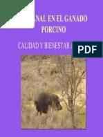 Exposicion Canal Del Cerdo (1)