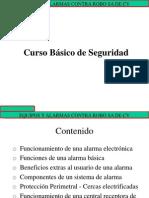 basicodeseguridadrevisadoene092009-131028173550-phpapp02