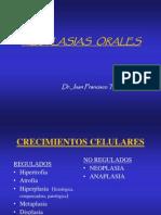 clasificación de las neoplasias