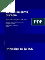 La Familia Como Sistema.mto.2007