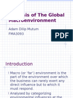 Analysis of the Global Macroenvironment