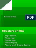 RNA PowerPoint 1