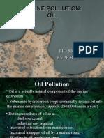 4 Pollution (Oil)