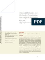 Bending Mechanics and Organization in Biological Membrances