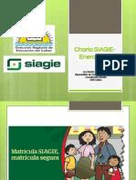 Charla SIAGIE-23 Enero 2014 Renán Delgado