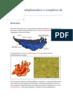 Retículo endoplasmático e complexo de Golgi.docx
