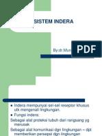 Sistem Indera- Matrikulasi