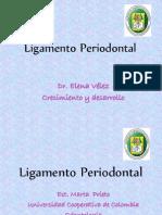 Biomecanica Del Ligamento Periodontal 1220069928202435 9