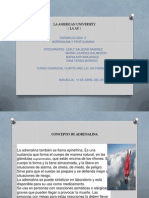 Adrenalina y Fentolamina1