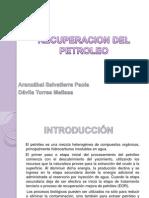 Recuperacion Del Petroleo