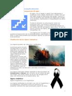 COMPOSICION_diseno.pdf