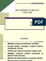 TEMA 4. Mecanismul cursului valutar.ppt