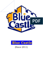 Project Report on Blue Castle (RM)