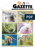 Pet Gazette 2009_10_01