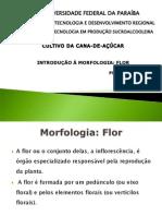 3flor-110917100634-phpapp01