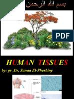 EPITH,Tissue,ph