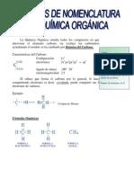 nociones Química Orgánica es