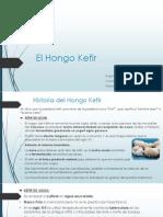 El Hongo Kefir ENTERO