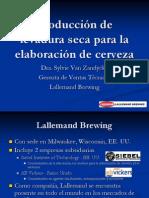 Produccion de La Levadura Seca