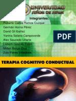 Terapia Cognitiva Conductual (1)