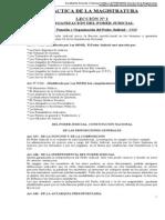 Practica de La Magistratura - Material Completo