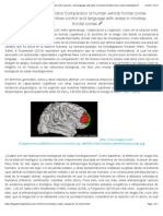 Comentario Sobre Comparison of Human Ventral Frontal Cortex Areas for Cognitive Control and Language With Areas in Monkey Frontal Cortex