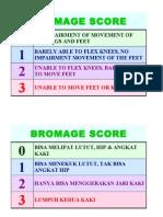 Bromage Score