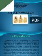 La Endodoncia (1)