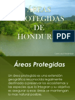 Precentacion de Areas Protegidas