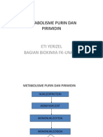 Metabolisme Purmin Dan Pirimidin2