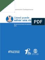 Manual Rcp PDF