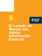 02lavado Demanos Info