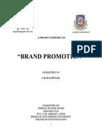 46259969 Brand Promotion