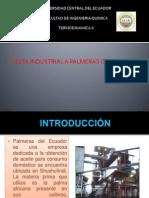 Exposicion de Palmeras Del Ecuador