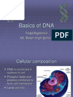 Basics of DNA
