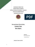 Trabajo Colab Calidad Total & Seis Sigma (3)